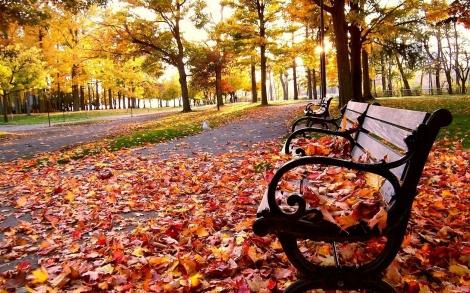 fall-wallpaper-9